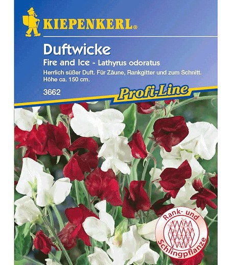 "Kiepenkerl Duftwicke ""Fire and Ice"",1 Portion"
