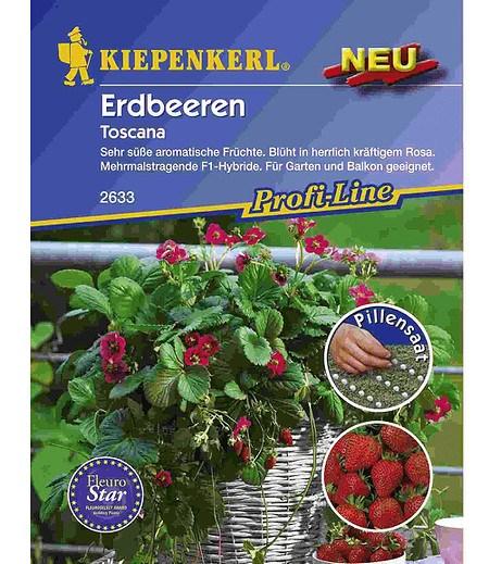 """Kiepenkerl Erdbeere """"Toscana"""" Pillensaat,1 Portion"""