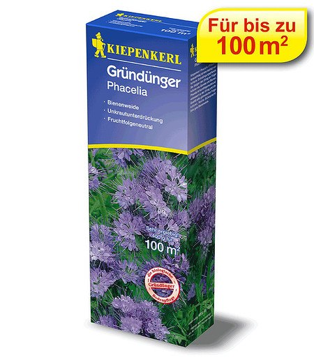 Kiepenkerl KIEPENKERL Gründünger Phacelia,400 g