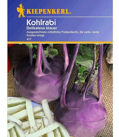 """Kiepenkerl Kohlrabi """"Delikatess blauer"""",1 Portion"""