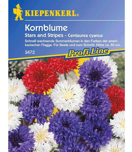 "Kiepenkerl Kornblume ""Stars and Stripes"",1 Portion"
