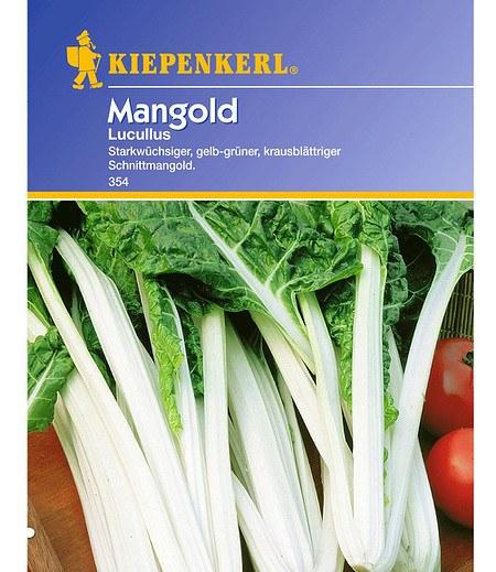 Kiepenkerl Mangold 'Lukullus',1 Portion
