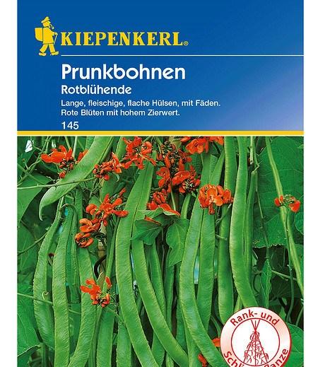 """Kiepenkerl Prunkbohnen """"Rotblühende"""",1 Portion"""