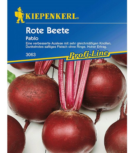 Kiepenkerl Rote Beete 'Pablo',1 Portion