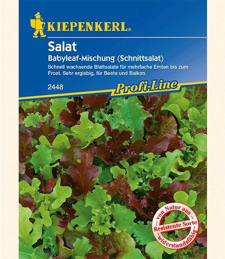 "Kiepenkerl Salat ""Babyleaf-Mischung"",1 Portion"