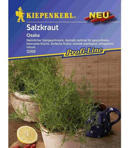 Kiepenkerl Salzkraut,1 Portion