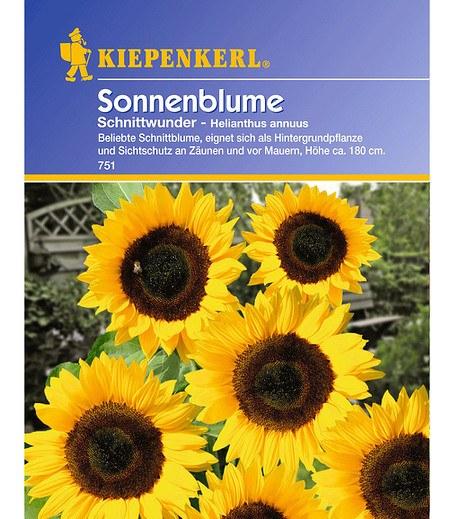 Kiepenkerl Sonnenblume 'Schnittwunder',1 Portion