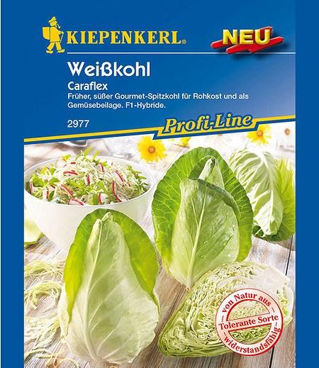 "Kiepenkerl Spitzweißkohl ""Caraflex"" F1,1Portion"