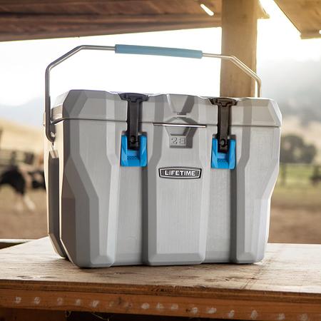 Lifetime Kühlbox 26,5 Liter Volumen, 33x 54,5x 40,5 cm (BxTxH)