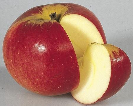 Lubera Apfel Paradis® Werdenberg® - Hochstamm