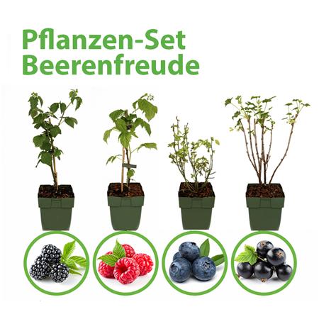 Mein schöner Garten Pflanzen-Set Beerenfreude