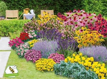 """Mein schöner Garten Staudenbeet """"Blooms for Months"""", 29 Pflanzen"""