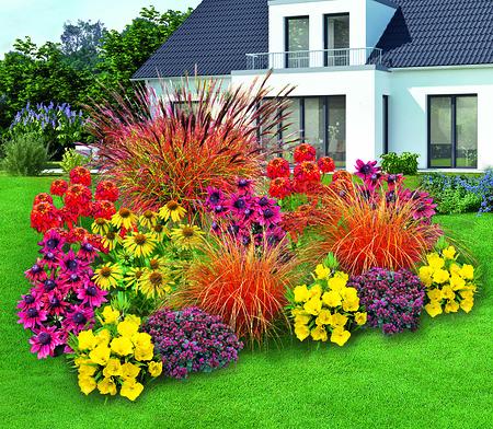 Mein schöner Garten Staudenbeet Sommerliebe, 14 Pflanzen