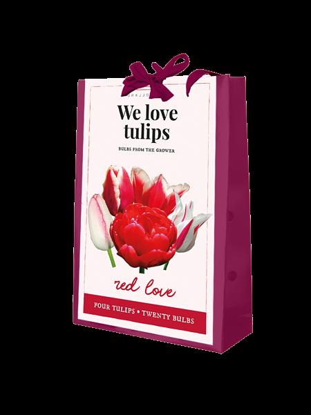 Mein schöner Garten Tulpen Beet 'Red Love'