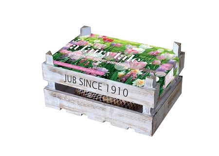 Mein schöner Garten Tulpen Box 'A Fairy Tale'