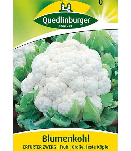 "Quedlinburger Blumenkohl ""Erfurter Zwerg"",1 Portion"