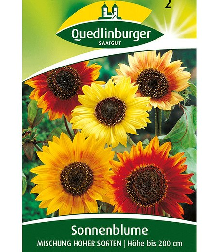 Quedlinburger Bunte Sonnenblumen,1 Portion
