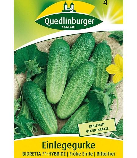 """Quedlinburger Einlegegurke """"Bidretta"""" F1,1 Portion"""