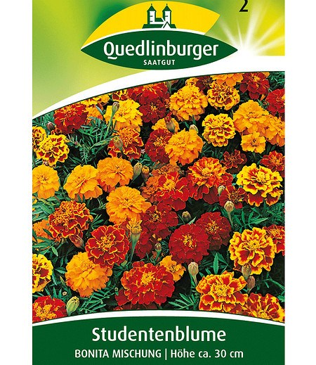 Quedlinburger Gefüllte Tagetes-Mischung,1 Portion