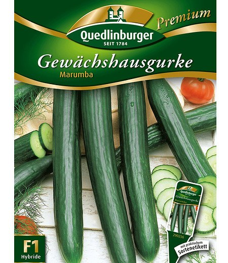"""Quedlinburger Gewächshaus-Gurke """"Marumba"""",1 Portion"""