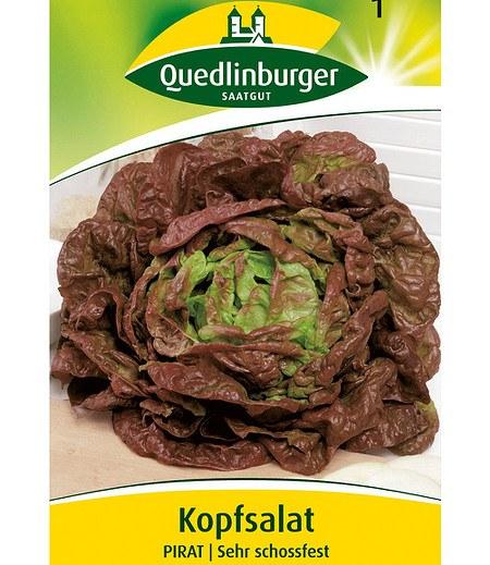 """Quedlinburger Kopfsalat """"Pirat"""",1 Portion"""
