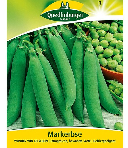 """Quedlinburger Markerbse """"Wunder v. Kelvedon"""",1 Portion"""