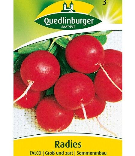 """Quedlinburger Radies """"Falco"""",1 Portion"""