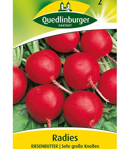 "Quedlinburger Radies ""Riesenbutter"",1 Portion"