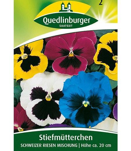 """Quedlinburger Riesen-Stiefmütterchen """"Schweizer Riesen"""",1 Portion"""