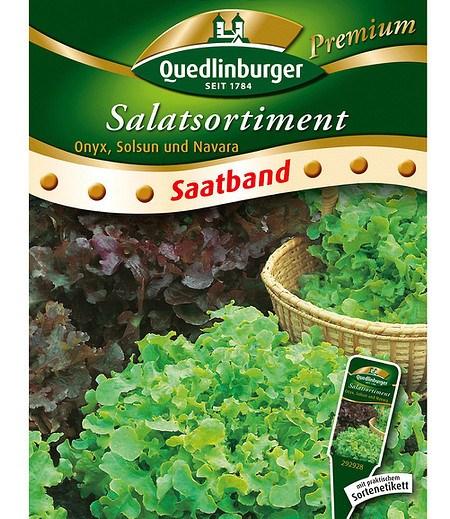 """Quedlinburger Salat-Sortiment """"Blattlausfrei"""" Saatband,6 Meter"""