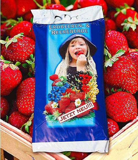 Spezial-Erdbeer- & Beeren-Erde 15 Liter,1 Sack