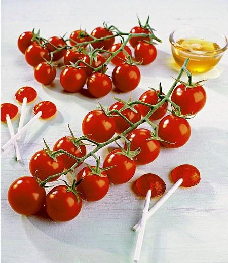 """Veredelte Zucker-Tomate """"Solena® Red"""" F1 Cocktailtomate 2 Pflanzen"""