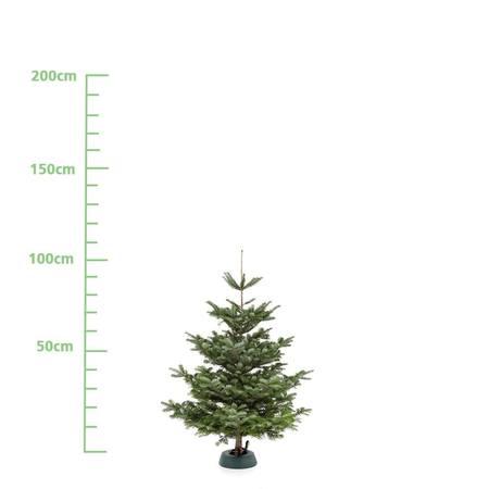Weihnachtsbaum S (ca. 100 cm)