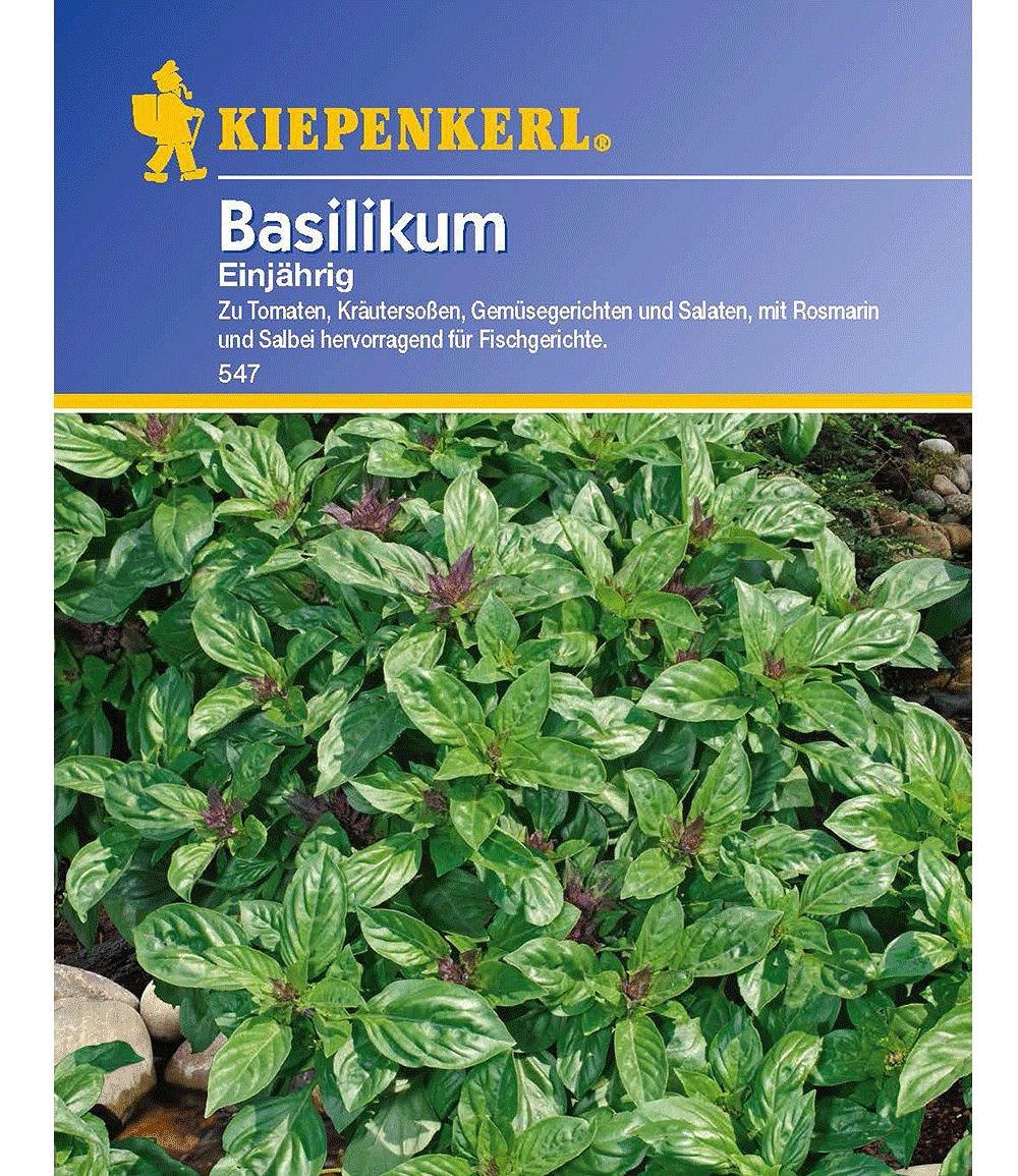 1b6d994e83fea kiepenkerl-basilikum-feinblaettrig1-portion---7a8c45ba-47eb-4330-b8bb-b9ca3532b0b6.jpg