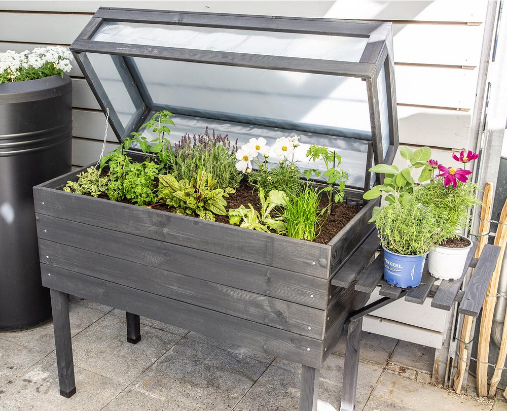 Mein schöner Garten Hochbeet Bundling günstig online ...