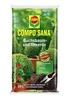 Compo COMPO SANA® Buchs- und Illexerde 20 L (1)