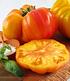 "Fleischtomate ""Ananas"",1 Pflanze (1)"
