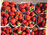 Lubera Erdbeere Mara des Bois 6er Träger (1)