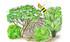 Mein Schöner Garten Bienenfreundliche Hecke im Set, 5 Pflanzen (1)