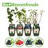 Mein schöner Garten Bio-Pflanzen-Set Beerenfreude (1)