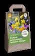 Mein schöner Garten Blumenzwiebel-Mix 'Eichenprozessionsspinner-Raupe' (1)