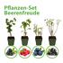 Mein schöner Garten Pflanzen-Set Beerenfreude (1)