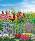 """Mein schöner Garten Staudenbeet """"Bauerngarten"""", 20 Pflanzen (1)"""