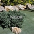 NOOR Unkrautblocker grün Bodengewebe 105gr/m² 0,9x10m (1)