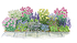Staudenbeet Ausgewogener Andrang, 12 Pflanzen (1)
