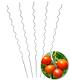 Tomaten-Spiralstab 110 cm 5er-Set,1 Set (1)