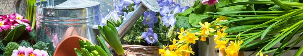 Inspiration für den Frühling
