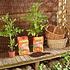 Floragard Aktiv Tomaten- und Gemüseerde (6)