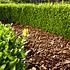 Floragard Pinienrinde grob 25 bis 40 mm (5)