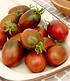 """Eier-Tomate """"Schwarze Pflaume"""",1 Pflanze (2)"""